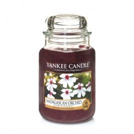 """madagascan orchid"" Yankee Candle Büyük Boy Kavanoz Mum"