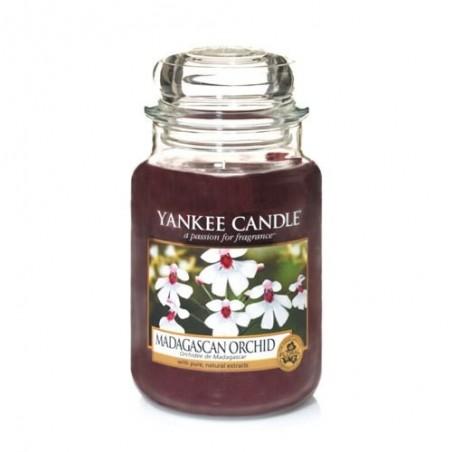 """madagascan orchid"" Yankee Candle Büyük Boy Kavanoz Mum 1344780E"