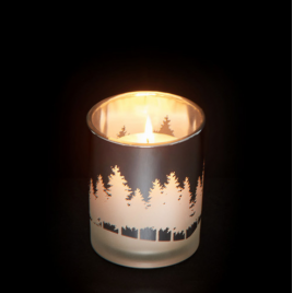 Yankee Candle Winterscape - Silver
